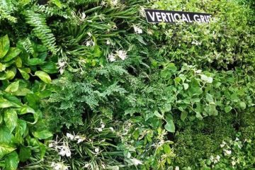 Vertical Grid™ (สวนแนวตั้งสำเร็จรูป-Green wall)